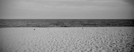 playa bn