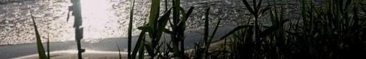 Playa-de-As-Canas-Prado.-Nigrán.-Pontevedra2